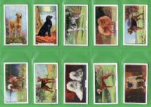 Tobacco Cigarette cards Dogs 1938 by Gallaher set